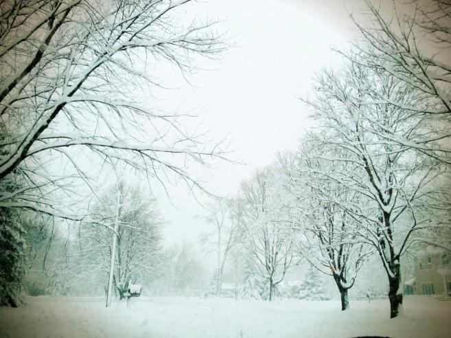 Snowfall Minnesota. withanopenheart.org